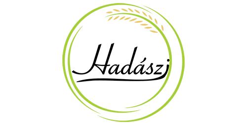 Hadászi Kft., logo